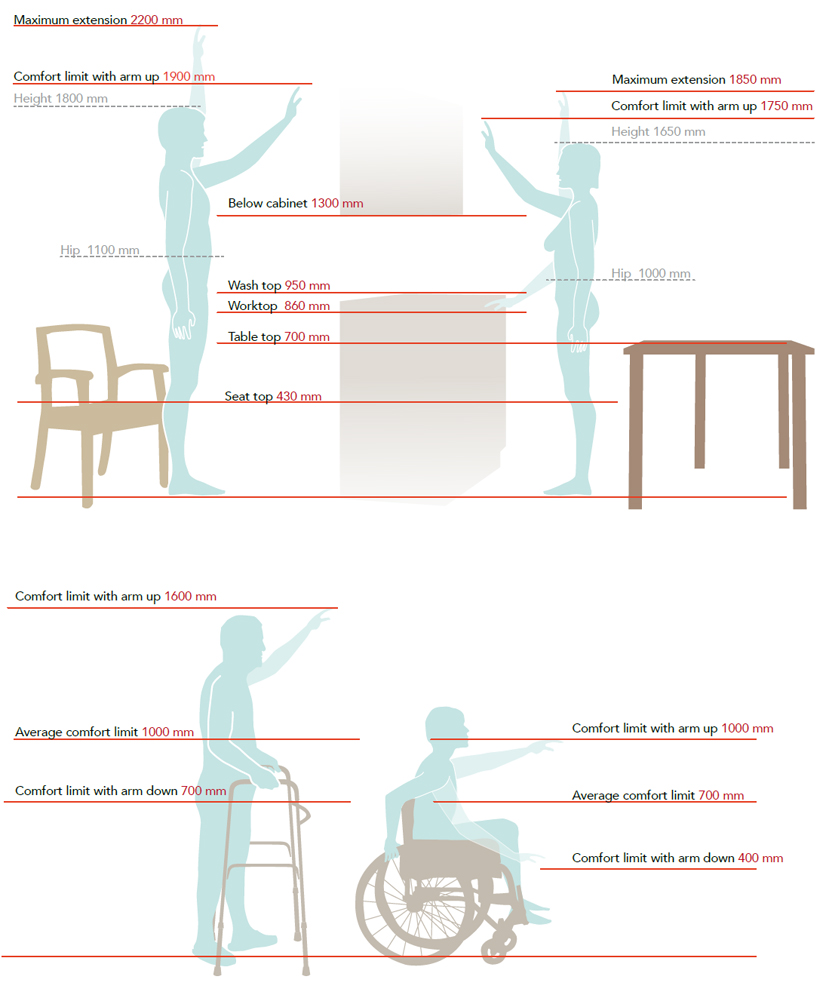 Anthropometry measures of the human body