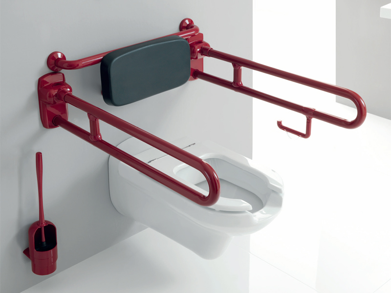 Insights disabled grab bar, toilet area