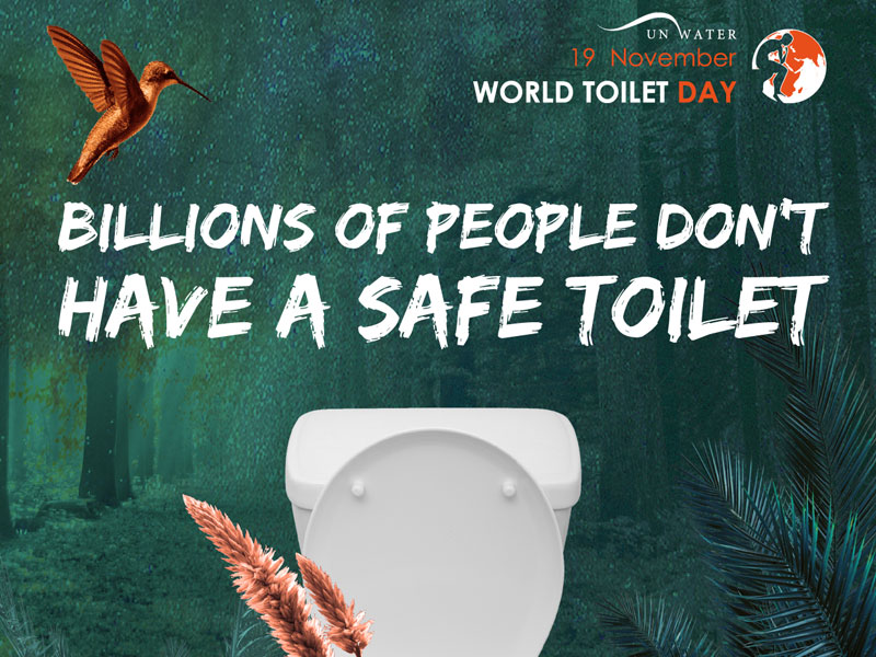Il 19 novembre si è celebrata la giornata mondiale del gabinetto (World Toilet Day)